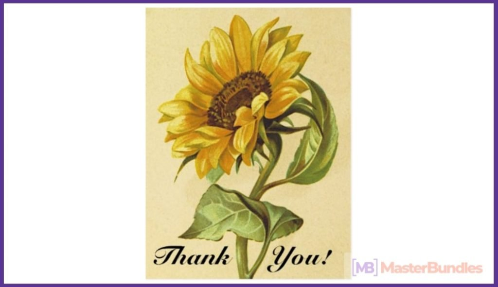 30+ Best Thank You Postcards in 2020 - best thank you postcards 19