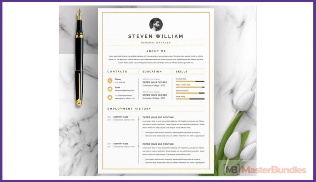 50+ Best Chronological Resume Templates in 2020: Free and Premium - chronological resume templates 02