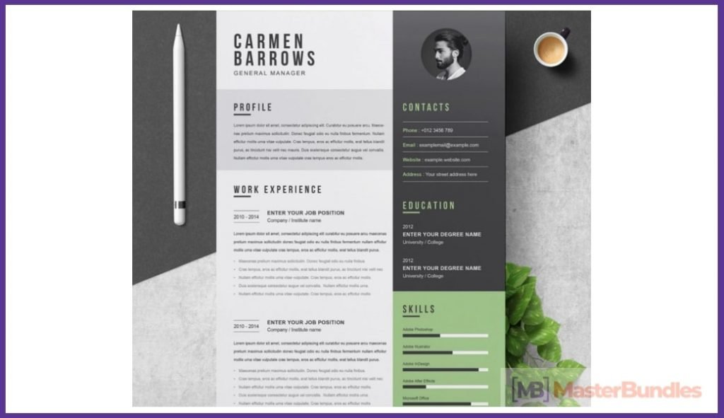 50+ Best Chronological Resume Templates in 2020: Free and Premium - chronological resume templates 03