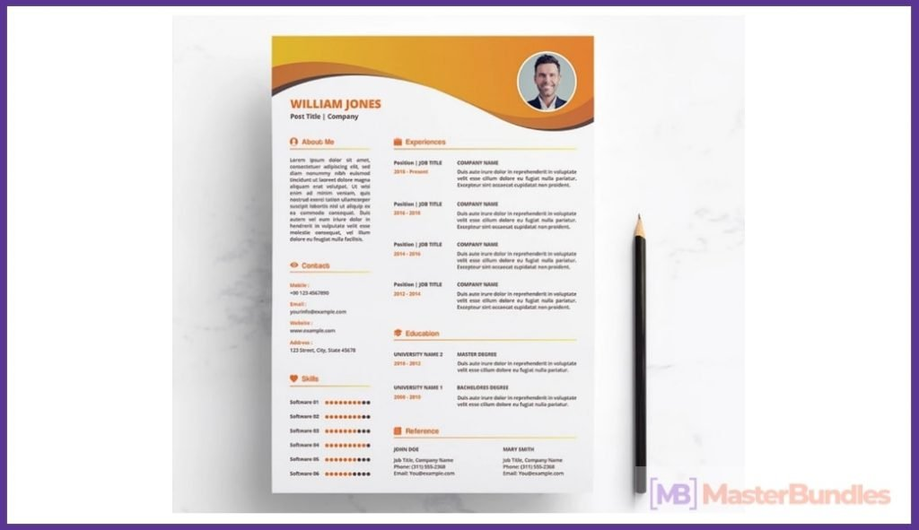 50+ Best Chronological Resume Templates in 2020: Free and Premium - chronological resume templates 05