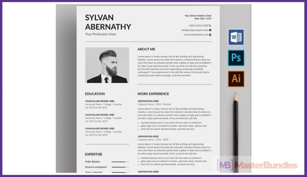 50+ Best Chronological Resume Templates in 2020: Free and Premium - chronological resume templates 06