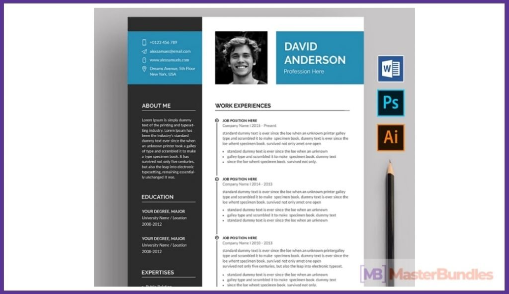 50+ Best Chronological Resume Templates in 2020: Free and Premium - chronological resume templates 08