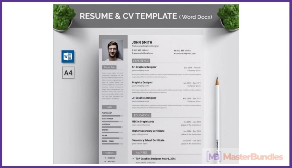 50+ Best Chronological Resume Templates in 2020: Free and Premium - chronological resume templates 09