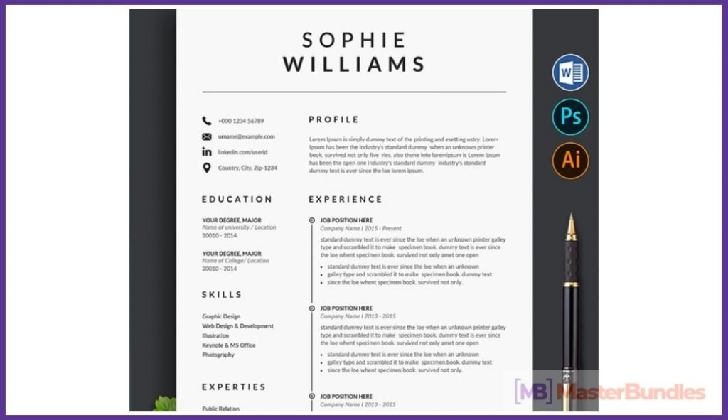 50+ Best Chronological Resume Templates in 2020: Free and Premium - chronological resume templates 10