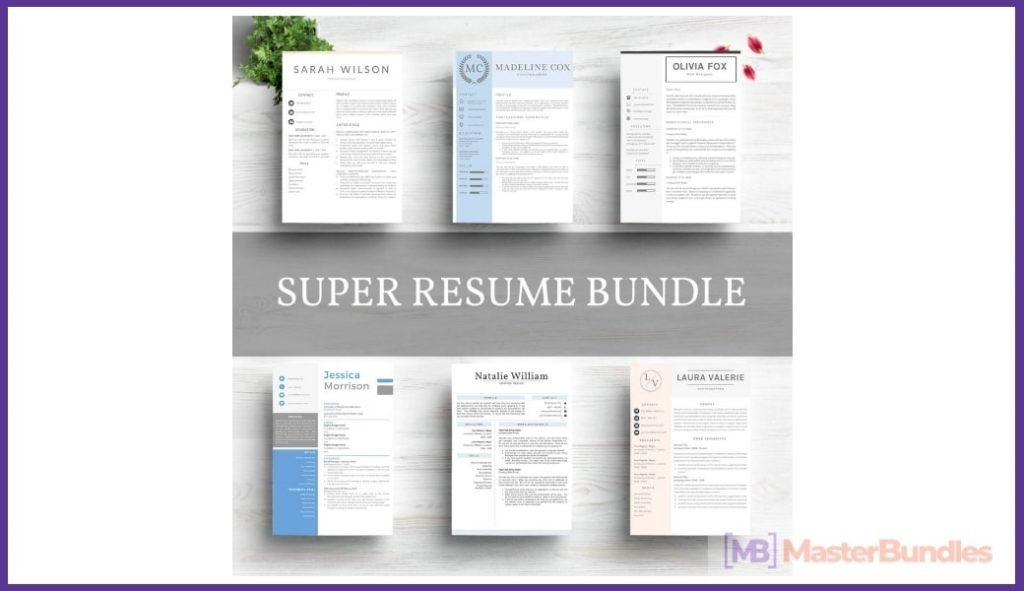 50+ Best Chronological Resume Templates in 2020: Free and Premium - chronological resume templates 12