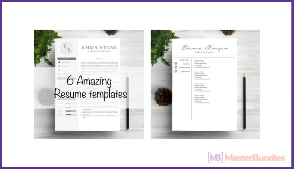 50+ Best Chronological Resume Templates in 2020: Free and Premium - chronological resume templates 13