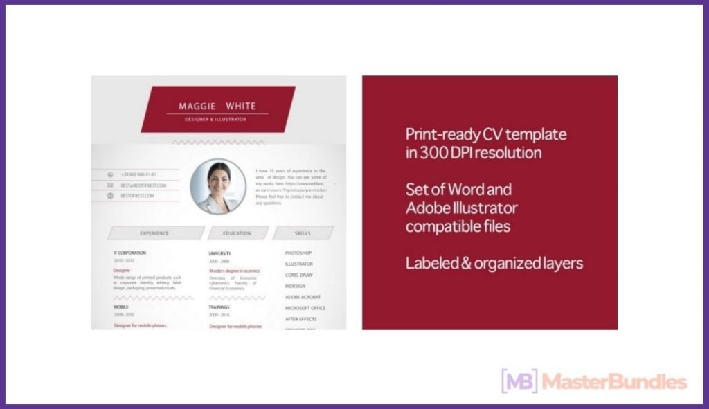 50+ Best Chronological Resume Templates in 2020: Free and Premium - chronological resume templates 15