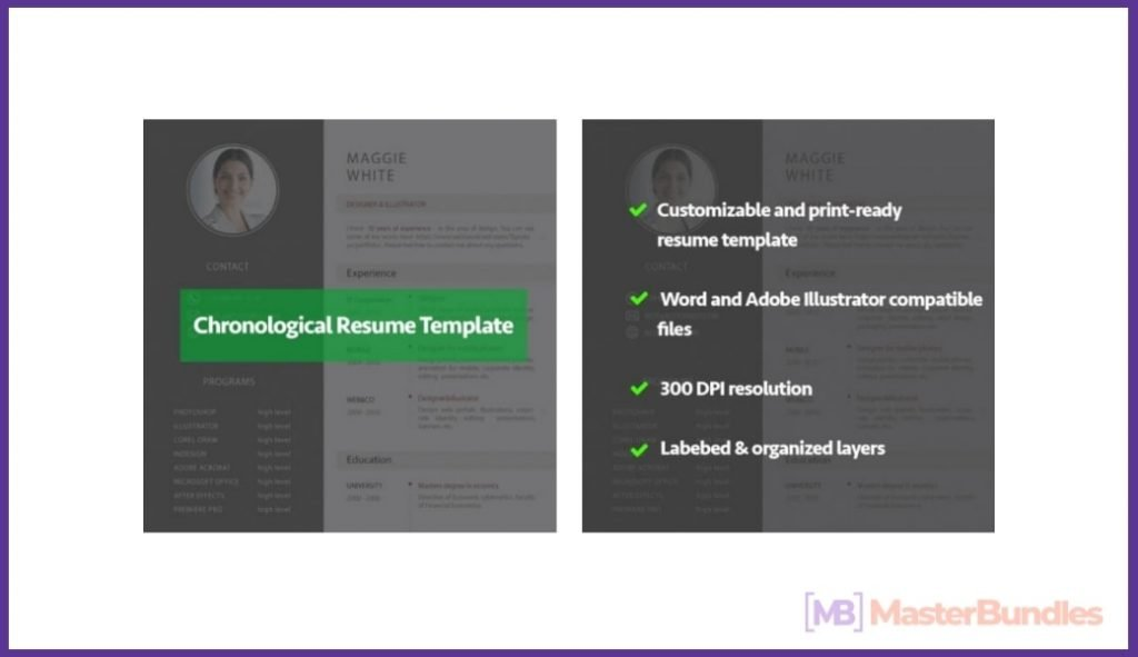 50+ Best Chronological Resume Templates in 2020: Free and Premium - chronological resume templates 16
