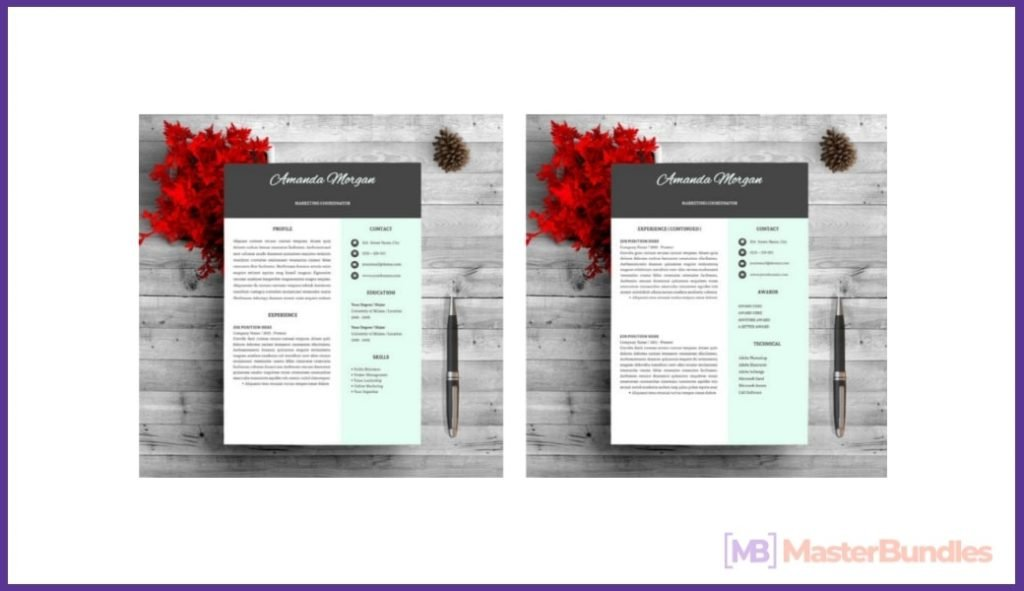 50+ Best Chronological Resume Templates in 2020: Free and Premium - chronological resume templates 19