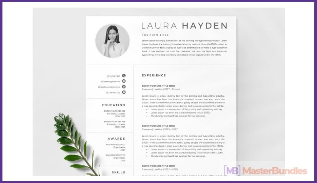 50+ Best Chronological Resume Templates in 2020: Free and Premium - chronological resume templates 27