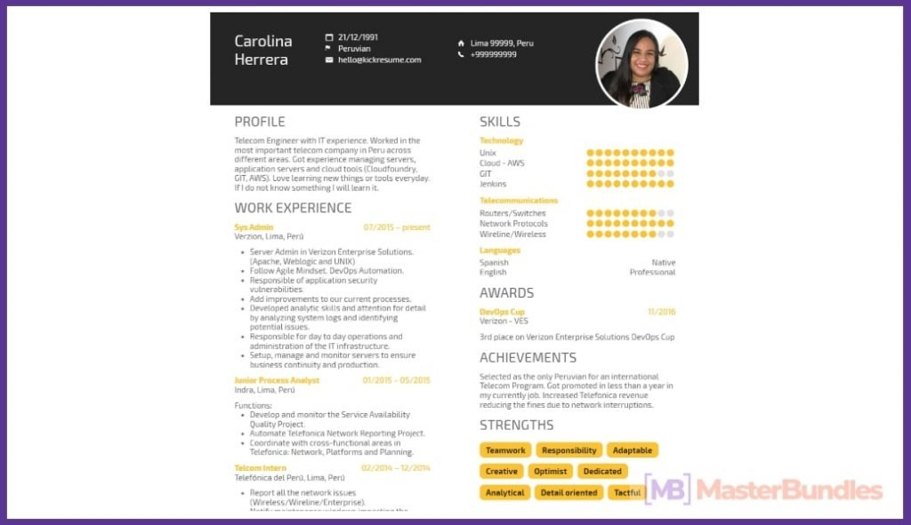 50+ Best Chronological Resume Templates in 2020: Free and Premium - chronological resume templates 31