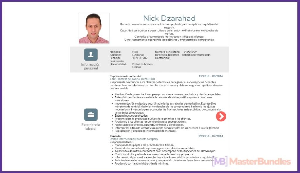 50+ Best Chronological Resume Templates in 2020: Free and Premium - chronological resume templates 33