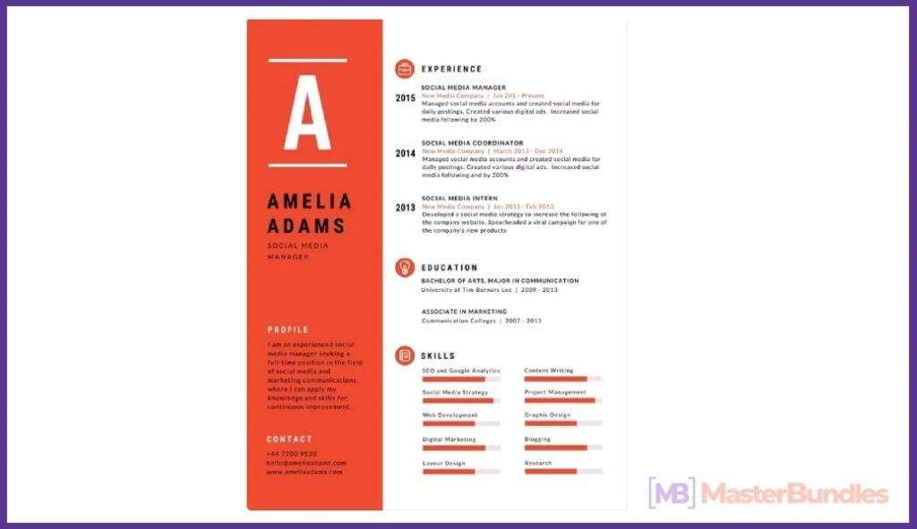 50+ Best Chronological Resume Templates in 2020: Free and Premium - chronological resume templates 48
