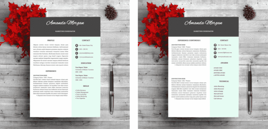 """I Can't Find A Job"". Best CV Templates and Resume Constructors for All Occasions in 2020 - i cant find a job 05"