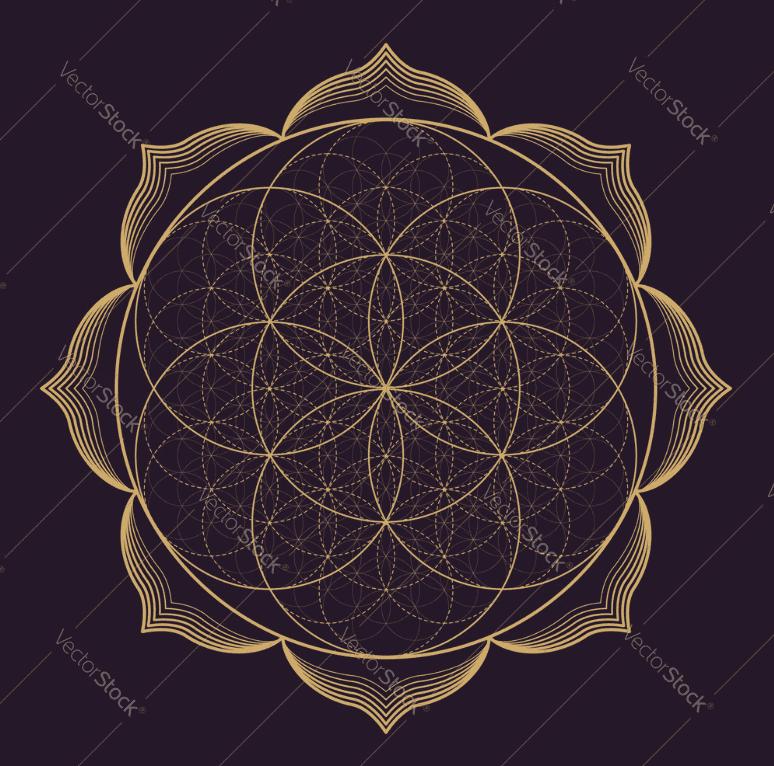 Mandala Designs in 2020: Illustrations, Patterns, Trends. Mandala Creator Online and Free Simple - best mandala patterns 2020 18