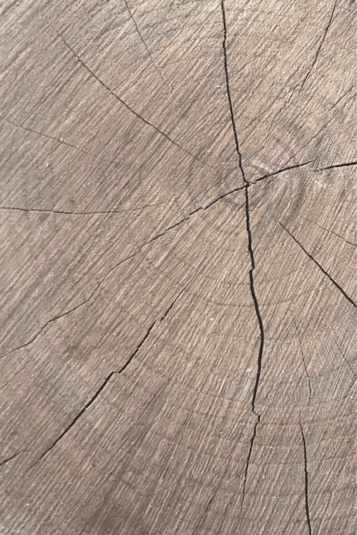 200+ Best Wood Texture Images in 2020: Free and Premium Wood Background Pictures - free wood texture images masterbundles 03