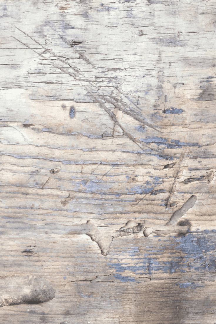 200+ Best Wood Texture Images in 2020: Free and Premium Wood Background Pictures - free wood texture images masterbundles 04