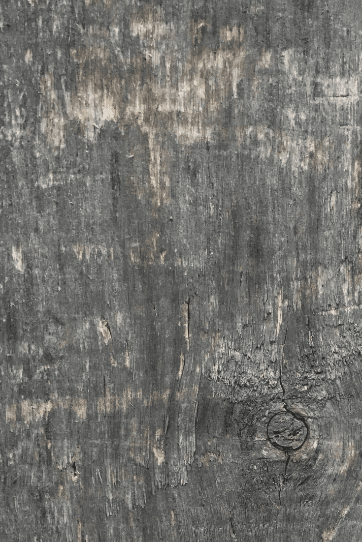 200+ Best Wood Texture Images in 2020: Free and Premium Wood Background Pictures - free wood texture images masterbundles 10