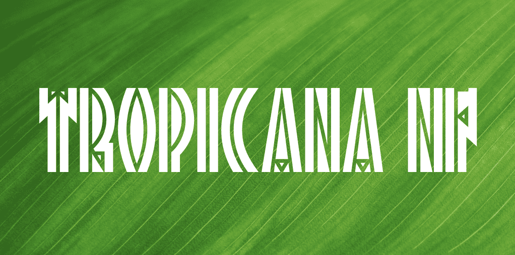 50+ Best Tropical Fonts 2021: Free and Premium 🌴 - tropical fonts6