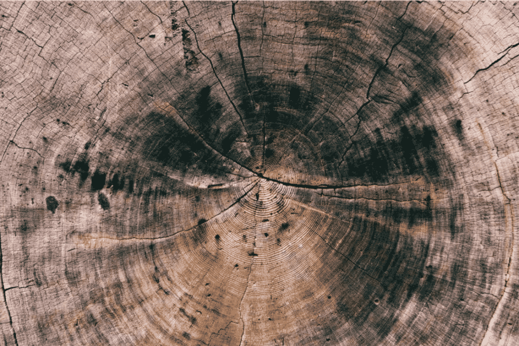 200+ Best Wood Texture Images in 2020: Free and Premium Wood Background Pictures - wood texture free premium 2020 30