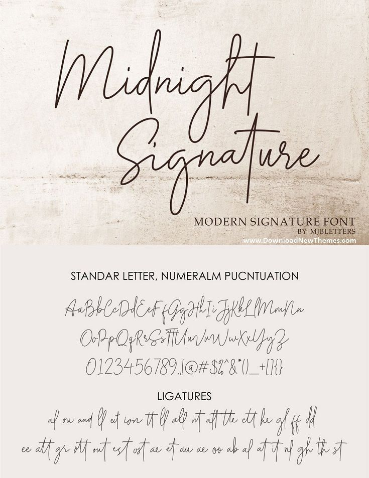 15+ Best Signature Fonts in 2020: Astounding Typography for Your Projects - signature fonts10