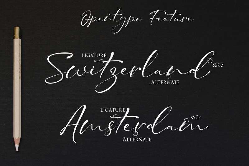 15+ Best Signature Fonts in 2020: Astounding Typography for Your Projects - signature fonts23