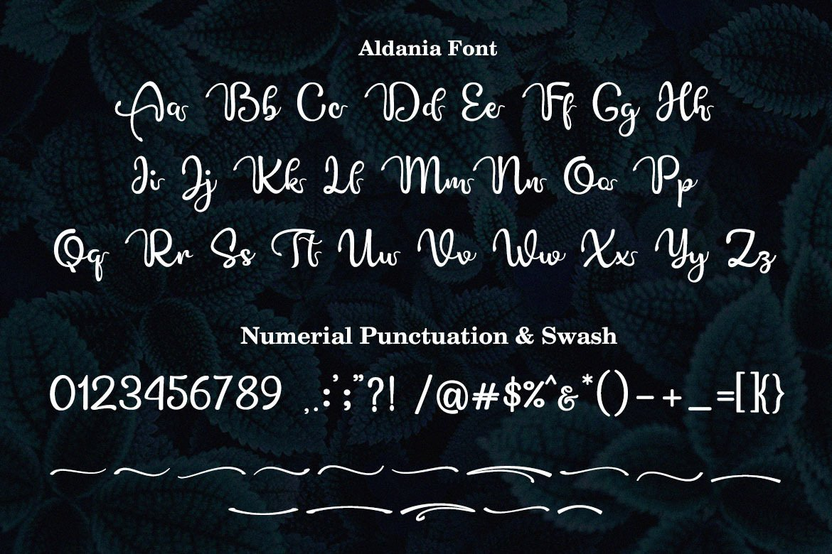 50+ Trendy Whimsical Fonts for Typography 2021 - image27