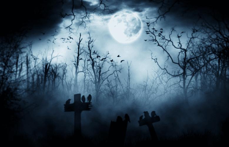 120+ Best Halloween Background Images 2020 - halloween backgrounds 4