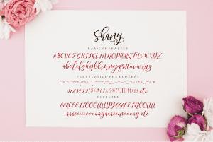 Shany Modern Hand based Typography