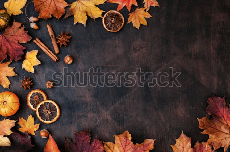 Best Thanksgiving Background 2020. 100+ Awesome Thanksgiving Background Images and Patterns - b 32