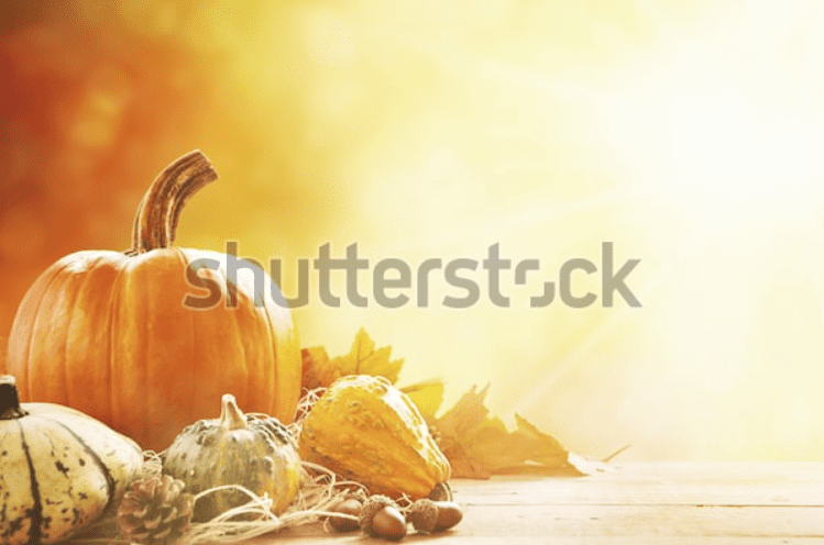 Best Thanksgiving Background 2020. 100+ Awesome Thanksgiving Background Images and Patterns - b 34