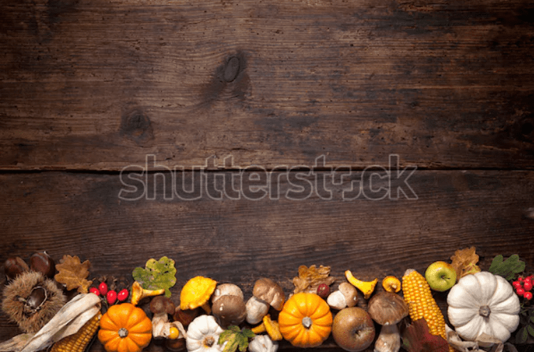 Best Thanksgiving Background 2020. 100+ Awesome Thanksgiving Background Images and Patterns - b 37