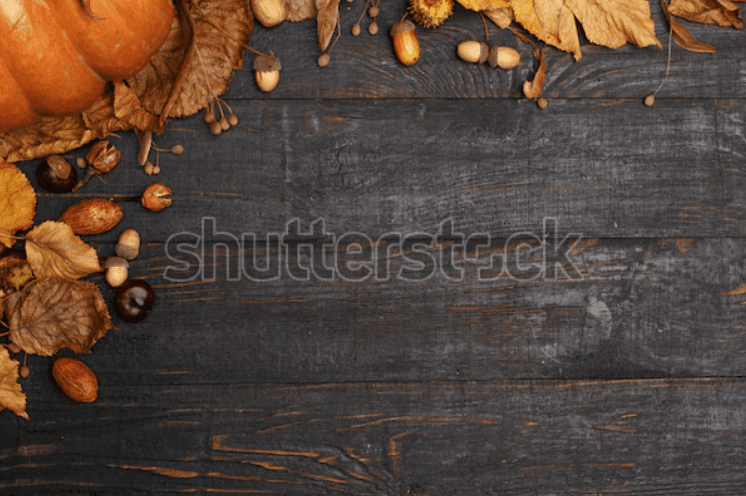 Best Thanksgiving Background 2020. 100+ Awesome Thanksgiving Background Images and Patterns - b 39