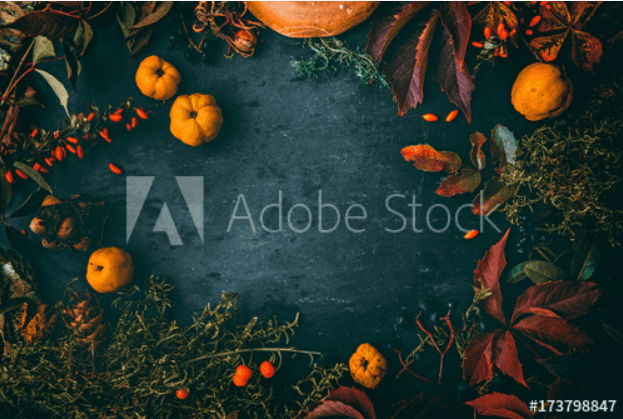 Best Thanksgiving Background 2020. 100+ Awesome Thanksgiving Background Images and Patterns - b 83