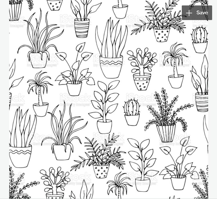 240+ Cactus Clipart 2021: Free and Premium Collections - cactus clipart 13