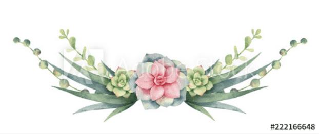 240+ Cactus Clipart 2021: Free and Premium Collections - cactus clipart 25