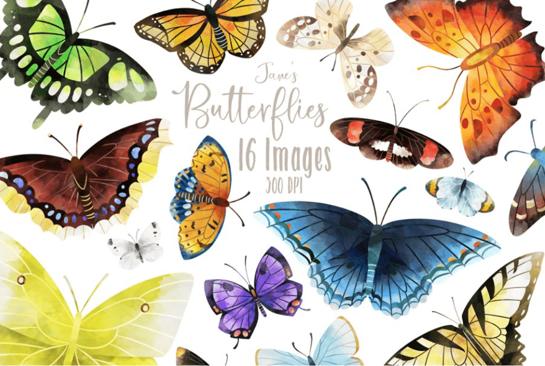 Best Butterfly Clipart 2021: What and Where to Search for? - clipart 1