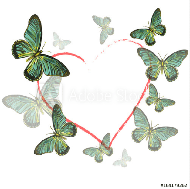 Best Butterfly Clipart 2021: What and Where to Search for? - clipart 14