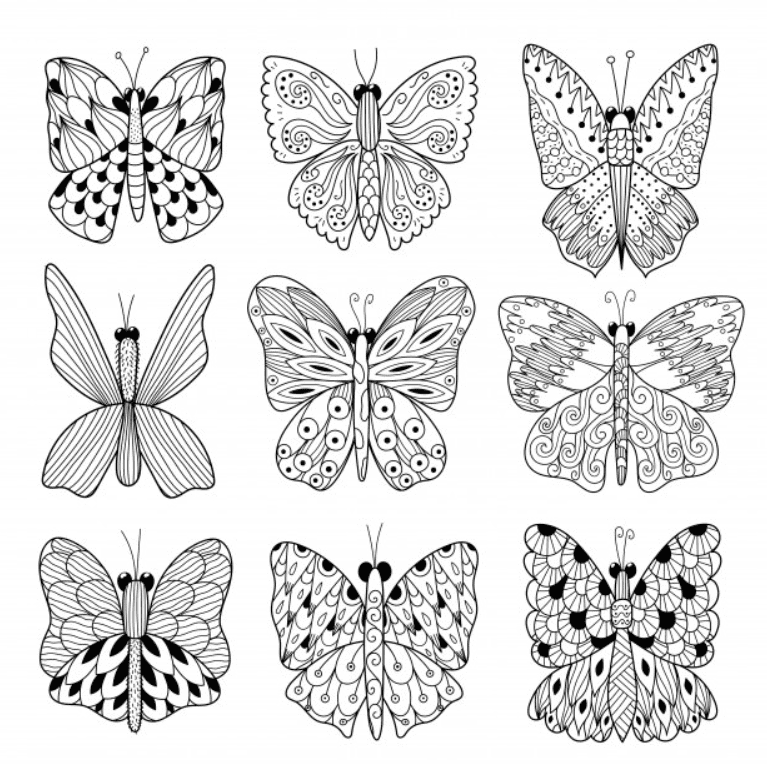 Best Butterfly Clipart 2021: What and Where to Search for? - clipart 16