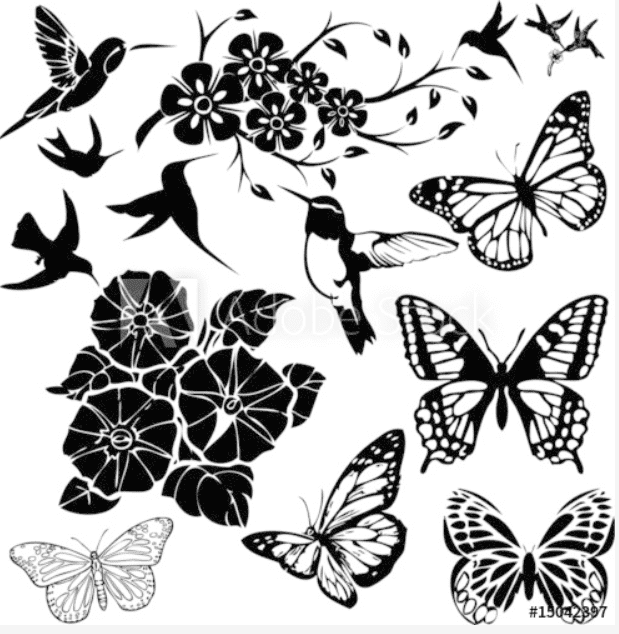 Best Butterfly Clipart 2021: What and Where to Search for? - clipart 21