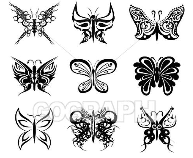 Best Butterfly Clipart 2021: What and Where to Search for? - clipart 27