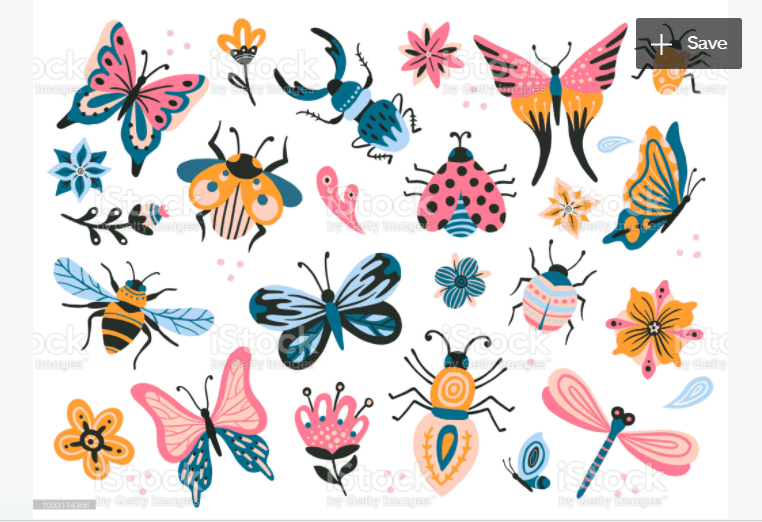 Best Butterfly Clipart 2021: What and Where to Search for? - clipart 38