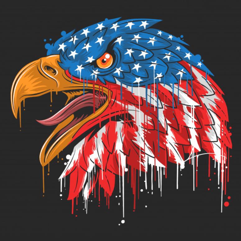 100+ Patriotic T-shirts for Men, Women, and Kids + 35 Mesmerizing T-shirt Designs 2021 - d 18
