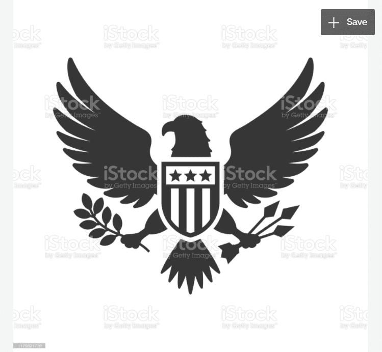 100+ Patriotic T-shirts for Men, Women, and Kids + 35 Mesmerizing T-shirt Designs 2021 - d 26