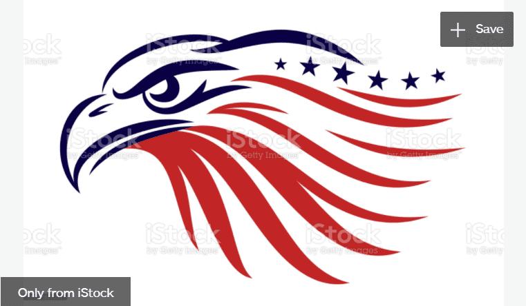 100+ Patriotic T-shirts for Men, Women, and Kids + 35 Mesmerizing T-shirt Designs 2021 - d 29