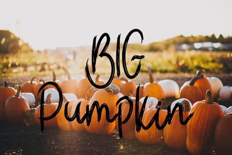 110+ Stunning Halloween Fonts For All Business Ideas 2020 - halloween fonts 99