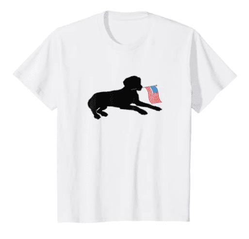 100+ Patriotic T-shirts for Men, Women, and Kids + 35 Mesmerizing T-shirt Designs 2021 - t 88