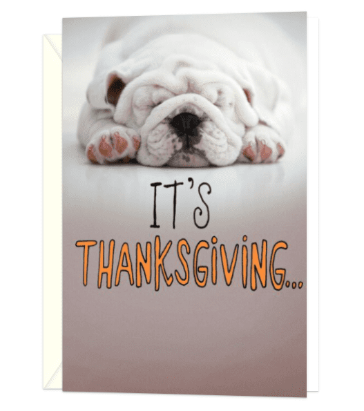 Eat, Nap, Repeat Thanksgiving Card.