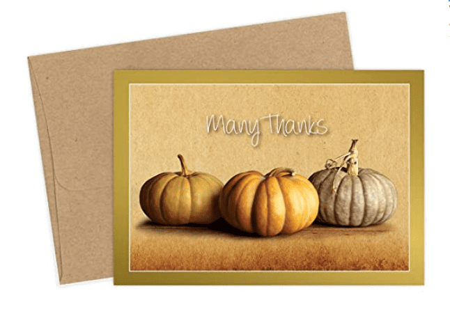 Fall Pumpkins Thank You Note Cards & Envelopes - 50 Cards & Envelopes - Features Gold Foil Highlights!