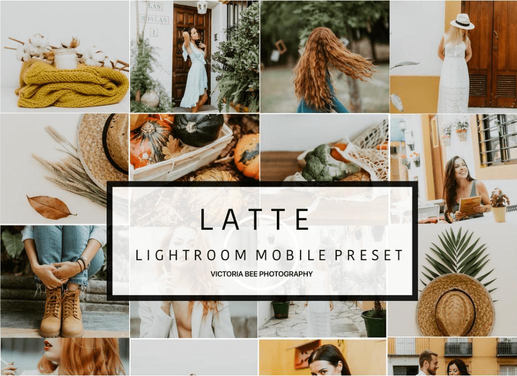 60+ Best Lightroom Mobile Presets 2021 & 30 Shortcodes To Manage Images - preset 23